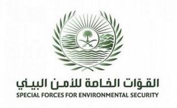 القوات الخاصة للأمن البيئي : عقوبة مخالفة نظام المراعي والغابات تصل إلى 50 ألف ريال لكل طن