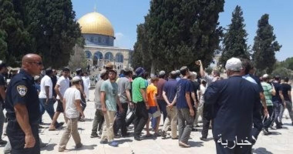مستوطنون يقتحمون باحات المسجد الأقصى بحراسة شرطة الاحتلال الإسرائيلى