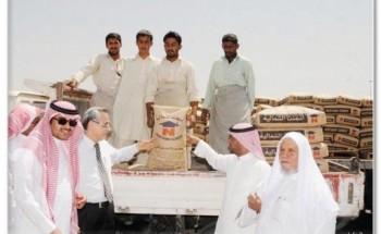 20 ريالاً لكيس الإسمنت في مكة .. و «المستورد» يفشل في خفض الأسعار