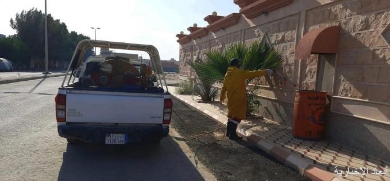 بلدية الخفجي تواصل أعمال التطهير والتعقيم في كافة أنحاء المحافظة
