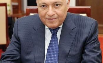 استنكار مصري لتصريحات الخارجية التركية