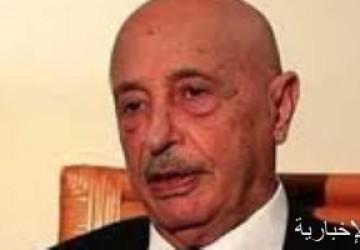 رئيس البرلمان الليبى: تركيا تخوض حربا خاسرة فى بلادنا وعاجزة عن دخول سرت