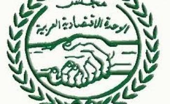 """""""الرفاعي"""" يرد: بيان مجلس الوحدة الاقتصادية العربية ليس له قيمة"""