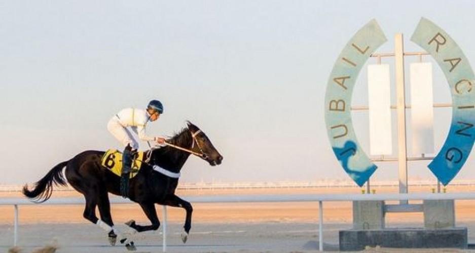 ميدان فروسية الجبيل يقيم سابع سباقاته للموسم الحالي ١٤٤٢هـ