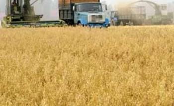 الفاو: استقرار أسعار الغذاء العالمية في فبراير