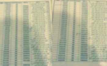 #فضيحة_انتخابات_العلمين يكشفها أشخاص أقحمت أسمائهم في القائمة المسربة