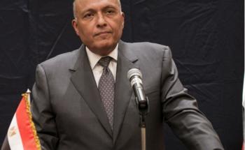 وزير الخارجية المصري يواصل اتصالاته مع الشركاء الدوليين حول تطورات الشأن الليبي