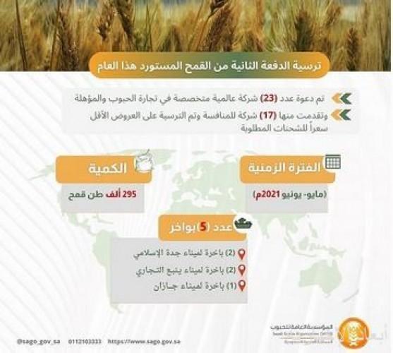المؤسسة العامة للحبوب تنتهي من ترسية الدفعة الثانية من القمح المستورد هذا العام