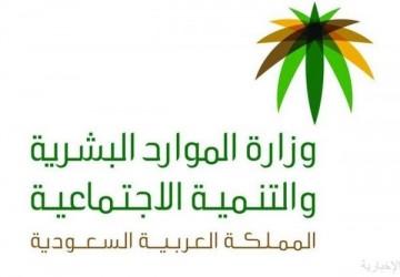 «الموارد البشرية» تستعرض مبادراتها لدعم منشآت القطاع الخاص