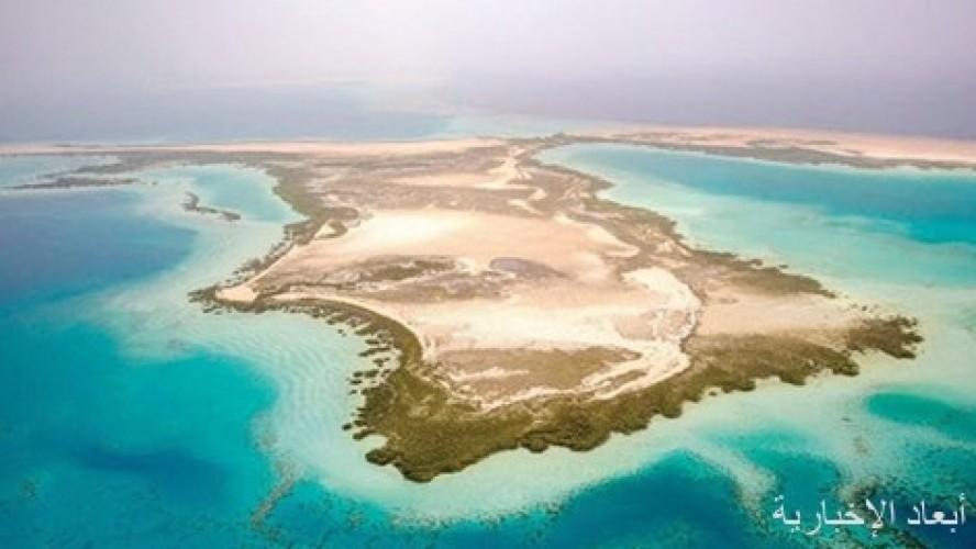 مجلس الوزراء يدعم سياحة المملكة بهيئة «البحر الأحمر» وتنظيم مجلس تنمية