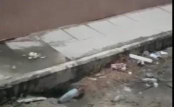 بالفيديو .. تضرر المنازل في حي السلام بسبب عدم وجود شبكة صرف صحي وتسرب المياه