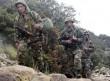 الدفاع الجزائرية: ضبط عنصرى دعم للجماعات الإرهابية بوهران