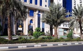 زراعة أكثر 35 ألف زهرة على طريق المسجد الحرام وميدان زمزم
