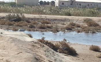 المستنقعات تحيط بمنازل حي الفهد بالخفجي