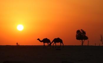 عدسة أبعاد الخفجي – لقطة سلويت , تصوير – ناصر الزعبي