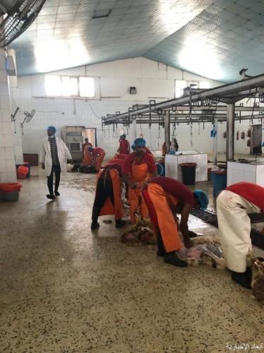 بلدية الخفجي: زيادة الكادر البشري بالمسلخ استعداداً لفترة الإجازة