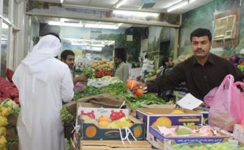 سوق الخضار بالخفجي: الطماطم «ينخفض» والخيار «يرتفع»