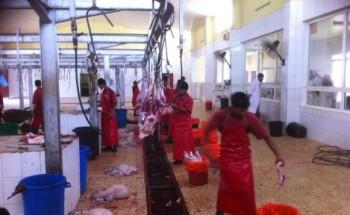 بلدية الخفجي: سلخ 3900 ذبيحة منذ بداية رمضان وفرض غرامات بقيمة 53000 ريال
