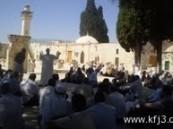 شرطي إسرائيلي يركل القرآن الكريم داخل المسجد الأقصى