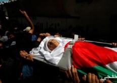 31 شهيدا برصاص الاحتلال و488 معتقلا فلسطينيا خلال شهر أكتوبر الماضى