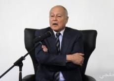 أبو الغيط يؤكد دعم الجامعة العربية القوى للقضية الفلسطينية
