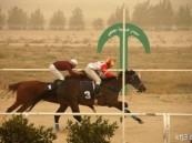الجواد (شاهقة) يفوز بكأس الأمير سلطان ويكسر رقمه القياسي السابق