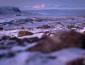 """حكومة """"جرينلاند"""" ترد على ترمب: الجزيرة ليست للبيع"""