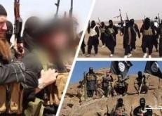 العفو الدولية: تخريب داعش أراضى الأيزيديين الزراعية فى العراق جريمة حرب