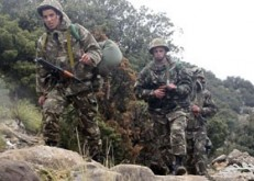 الجيش الجزائرى يدمر مخبأ للإرهابيين بولاية سكيكدة