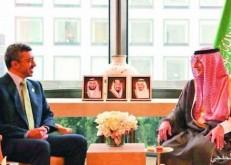 الجبير يلتقي وزير الخارجية الإماراتي في نيويورك