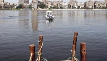 """مصر.. """"سد النهضة"""" يدفع """"الشورى"""" لاستدعاء الرئيس"""