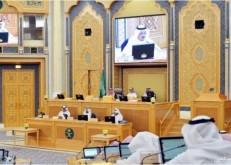 الشورى: إنهاء احتكار «الكهرباء» وفتح المنافسة سيحافظ على المال العام