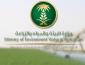 «البيئة»: 45.6 ألف طن إنتاج الزراعة العضوية للمملكة في 2018