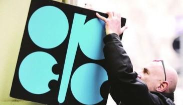 انطلاق اجتماع أوبك الـ 175 في فيينا.. وسط آمال في الخروج بقرار لتقييد الإنتاج النفطي