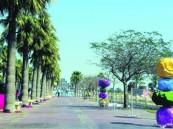 11 موسماً سياحياً وترفيهياً تدعم الاقتصاد الوطني وترفع مستوى «جودة الحياة»