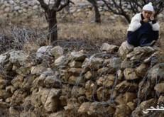 """وقفة تضامنية رفضا لمخططات """"الاستيطان """" الإسرائيلى فى هضبة الجولان"""
