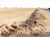 الامتناع عن الشراء يعود بأسعار الأراضي لعام 2011