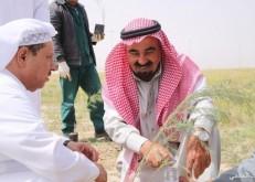 برنامج أسبوع البيئة يتواصل بحملة «تاهيل المنتزهات البرية» بالخفجي