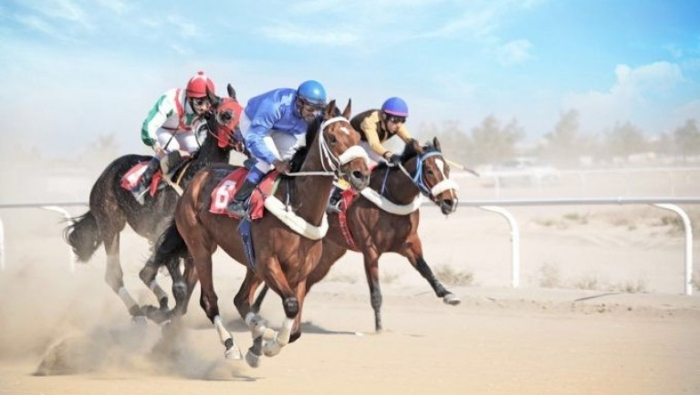 عدسة أبعاد التنافس الشريف هو الفوز ، تصوير – يوسف العنزي
