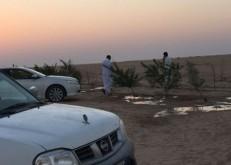 أهالي الأبرق في ظل انعدام الخدمات يزرعون الأشجار لوقف زحف الرمال