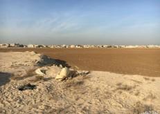 بلدي الخفجي يقترح مخططاً سكنياً بمساحة 400 ألف متر لمنح الأوامر الساميه
