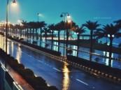 عدسة أبعاد الخفجي – هدوء الشوارع مع تساقط الأمطار في وقت سابق على الخفجي
