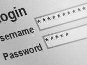 تزايد الهجمات يحفز للتفكير بأساليب جديدة لحماية الحسابات الإلكترونية