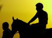 صورة إحترافية لسباق الفروسية بالخفجي ( تصوير علي الشمري )