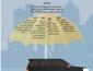 20 % من الأفراد في المملكة لديهم تأمين سيارات يغطي الكوارث الطبيعية